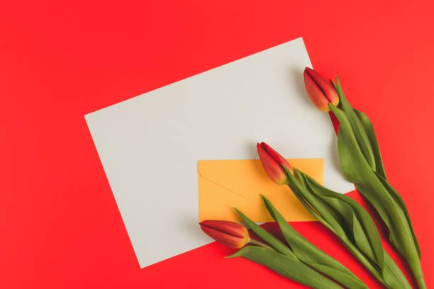 flowers tulips and yellow envelope with blank paper card on red