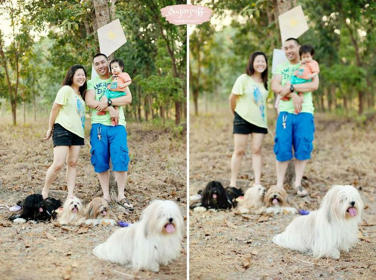 Props by something pretty manila photo by sugarpuff photography kite diy dogs