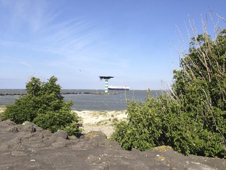 Green harbor coast sight at the 2nd Maasvlakte