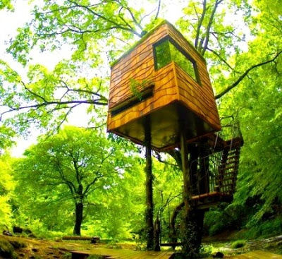 The Treehouses Of Japanese Designer Carpenter Tokashi Kobayashi - Takashi is a self taught designer carpenter of over 120 bespoke treehouses in Japan.Architecture In The Trees, Dwell Magazines, Kobayashi Built, Takashi Kobayashi, House Worthy, Tree Houses, Trees House Teas, Niki Club, Awesome Treehouse