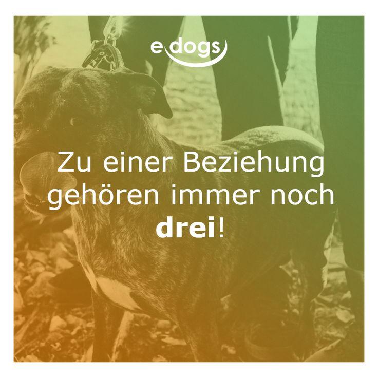 mann+frau+hund - lustige sprüche - hundeliebe - hundezitat