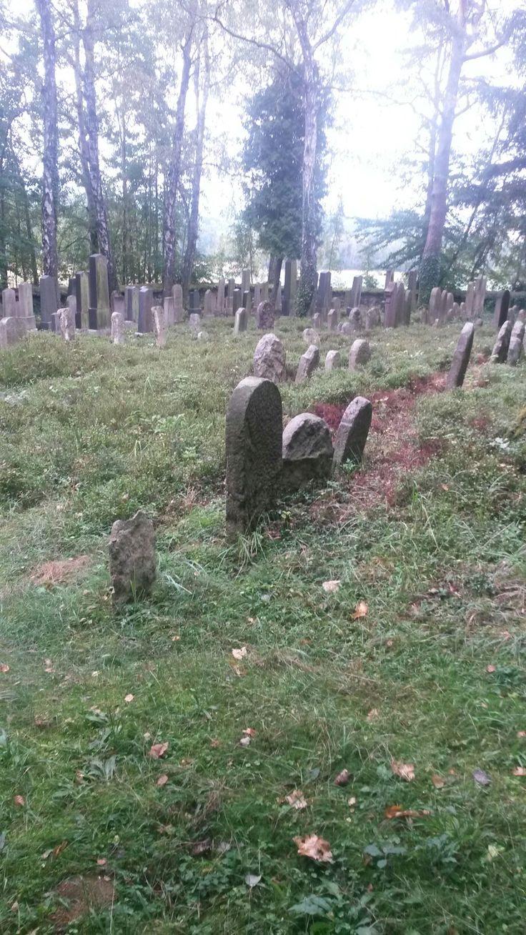 Zidovsky hrbitov Kamenice nad Lipou-Antonka