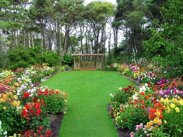 305 Best Welcome To Mendocino Coast Botanical Gardens Images On Pinterest A Flower Bay Area
