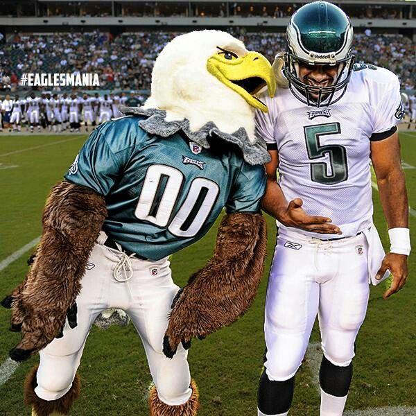 Swoop Eagles 45671 Loadtve