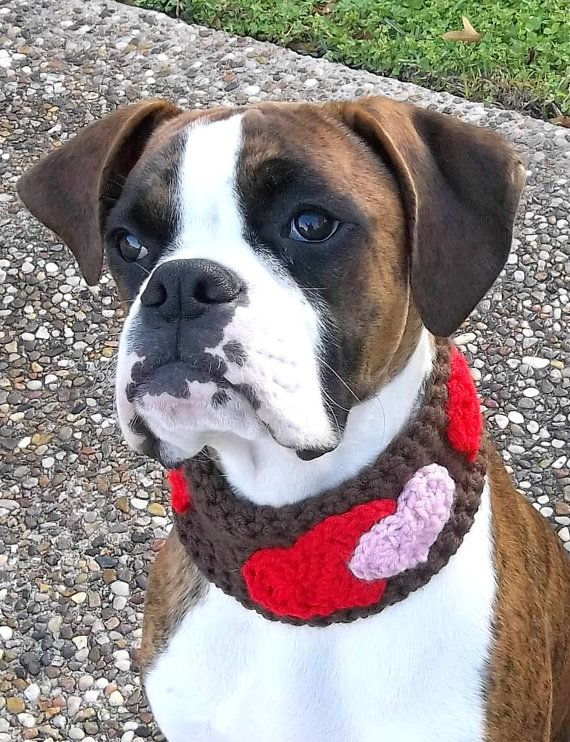 Don't forget the pooches on Valentine's Day! My pup would tear this off in a second though!