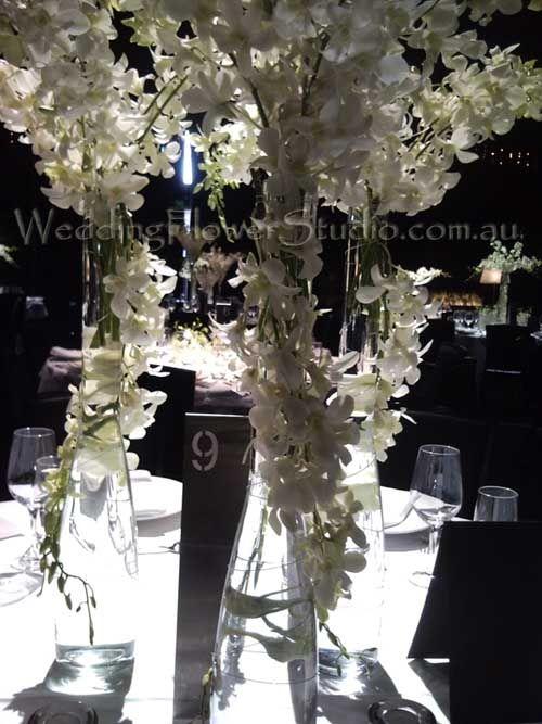 White orchids table arrangement wedding flowers decorations