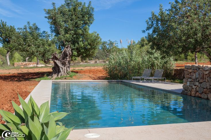 1000 idee n over kleine zwembaden op pinterest dompelbad binnenplaats zwembad en kleine tuin - Bassin tuin ontwerp ...
