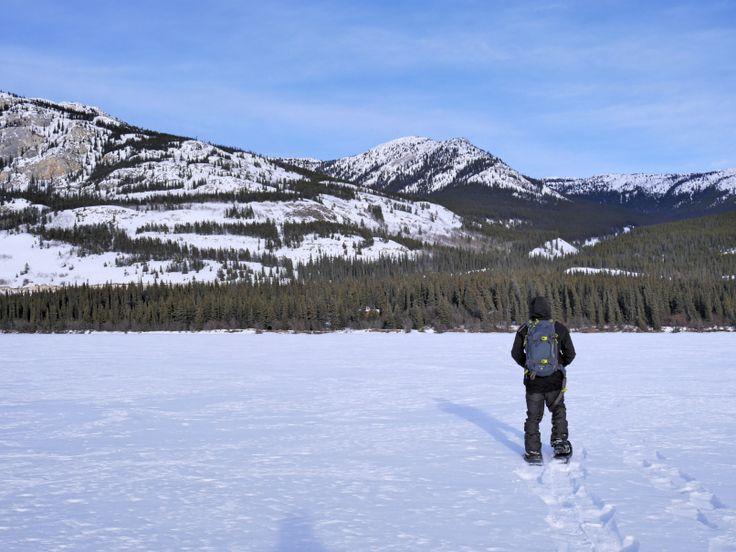 Suivez les traces de raquettes et vous aperceverez le Little Atlin Lodge quelque part à travers les arbres! | Yukon, Canada