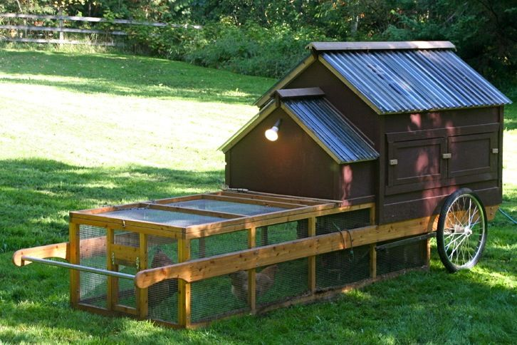 84 best images about my animals on pinterest tractors for Mobile hen house plans