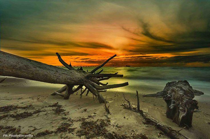 Sunset sea è una fotografia che è stata scattata da Paolo Garzella, conosciuto fotografo pisano appassionato di foto naturalistiche e paesaggistiche - from 122€