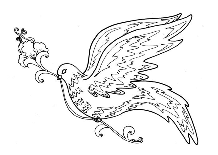 Adult Bird Colouring Pages Page