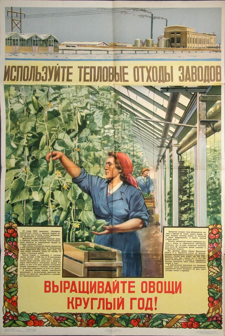 1957 Use thermal waste from enterprises. Grow vegetables all year round.