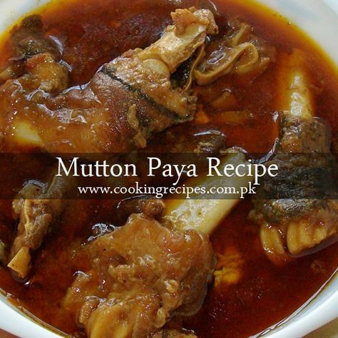 11 best mundi paaya laakhi etc spl images on pinterest indian mutton paya recipe paya curry can be prepared using mutton or beef however forumfinder Images