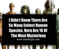 I Didn't Know There Are So Many Extinct Human Species. Here Are 10 Of The Most Mysterious