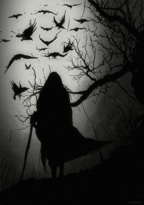 """Imren: """"Besuche den Hängenden Baum jedes Jahr und lese … – #fly #hanging #Imren #lis #tree"""