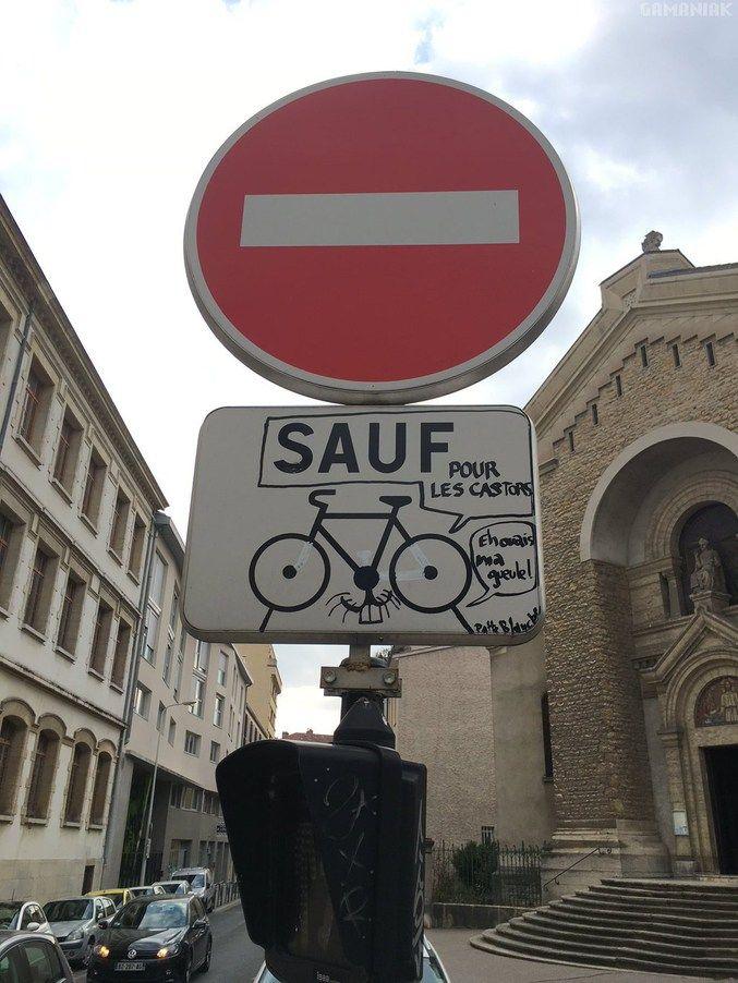 Castor en ville. https://www.15heures.com/photos/p/37504/