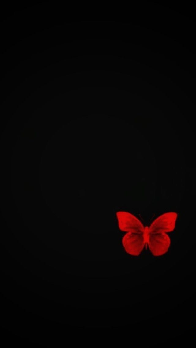 Pin By Kat Olivares On Butterfly Butterfly Wallpaper Backgrounds Black Background Wallpaper Flowery Wallpaper