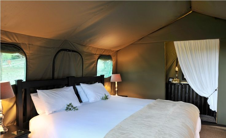 an untamed garden of eden where the spoor of wildlife invites you to explore the timeless beauty of the bush; where an oasis of unimaginable luxury provides the greatest vantage point to the Big Five and its vast, untouched wilderness.