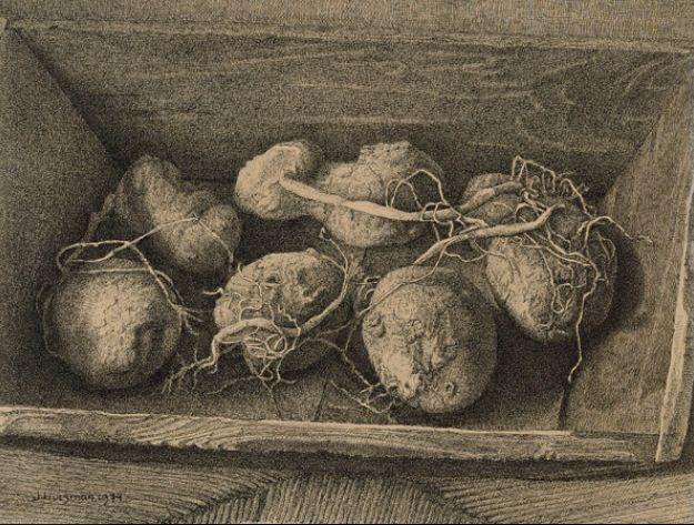 Aardappel bak,van Jopie Huisman.