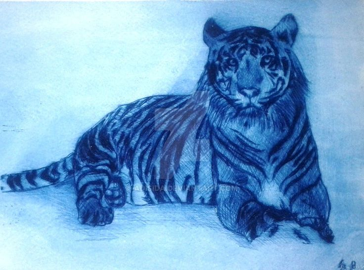 Tiger2 by Adisida on DeviantArt