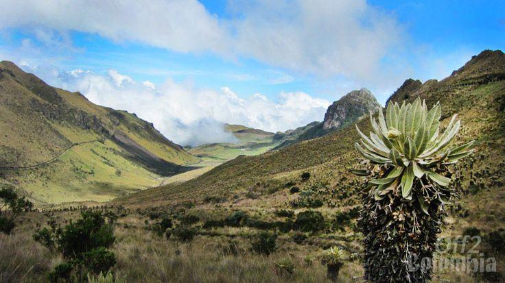 PNN Los Nevados, Colombia  http://off2colombia.com/national-park-los-nevados