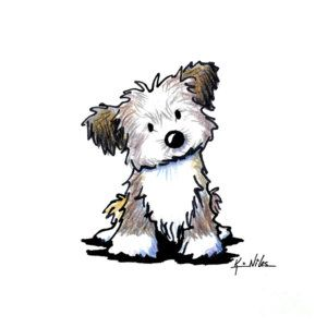 Havanese Drawing - Havanese Puppy by Kim Niles