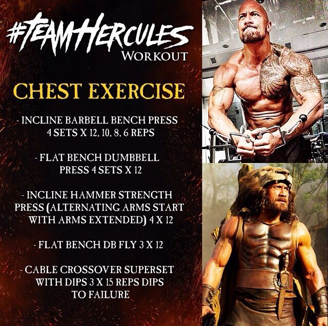 Team Hercules Workout Chest