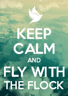 KEEP CALM AND FLY WITH THE FLOCK  :D Maximum Ride :D :D :D