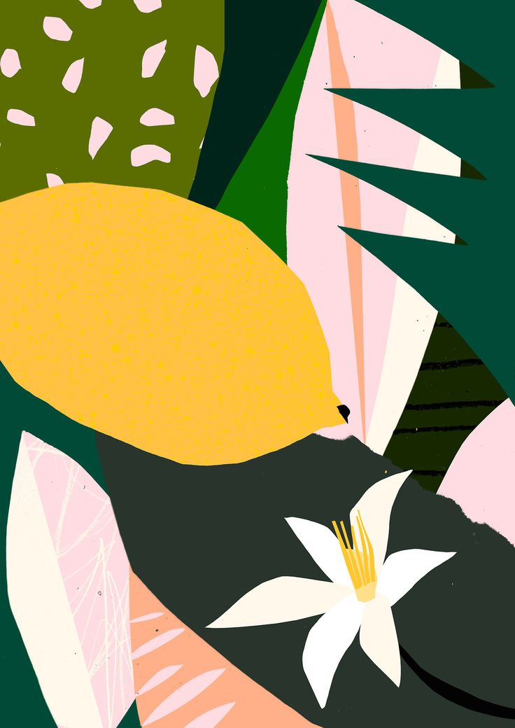 'Lemon' - Tom Abbiss Smith. #abstract #contemporary #illustration #collage #design #lemon #flower