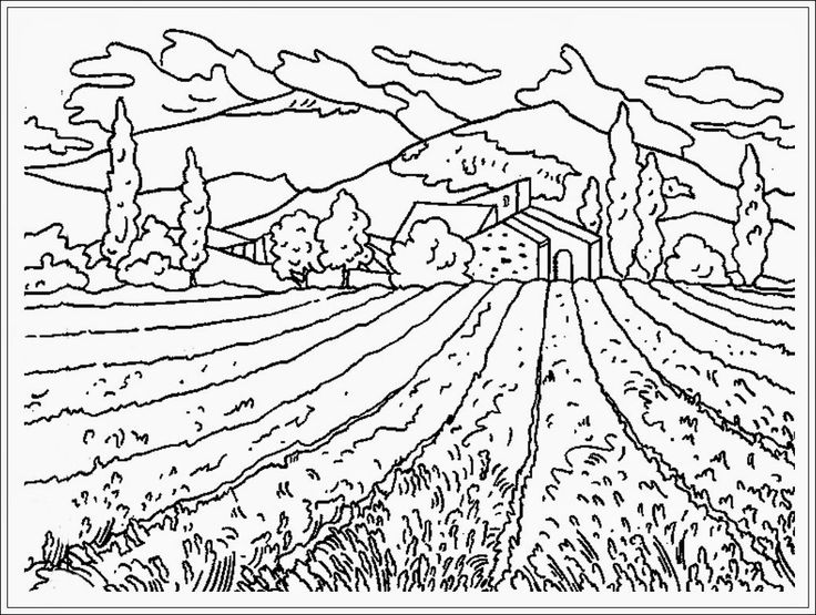 Nature flower field of nature coloring page