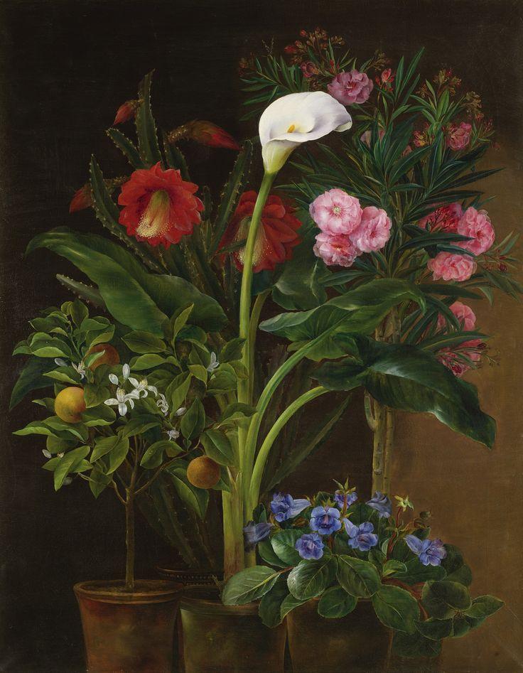 'An Orange Tree, Streptocarpus, Oleander, Calla Lily and Cactus Flowers' - Louise Garlieb (Danish 19th Century)
