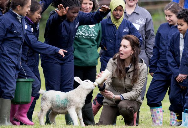 Farms for City Children May 3, 2017