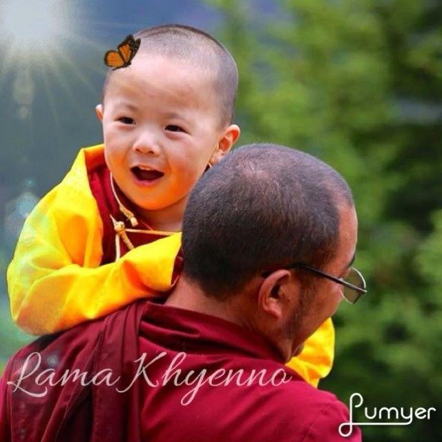 Lama Khyenno 🙏🏻🙏🏻🙏🏻 #palyul #buddhism #nyingma #tulku #reincarnation #blessed #happyface #cute #smile #compassion #penorrinpoche #yangsirinpoche #vajrayana #rinpoche #lama #lamakhyenno #tibet