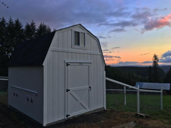 A Sunset, A Pasture, And A Tuff Shed Chicken Coop Barn. Life Doesn