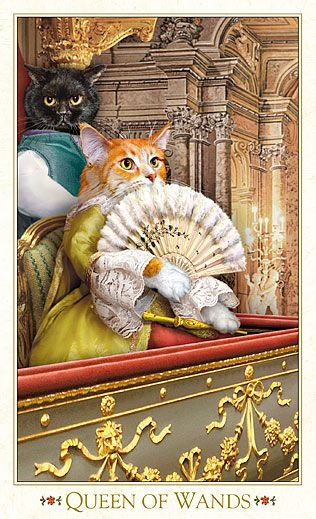 1000+ Images About Bohemian Cats On Pinterest
