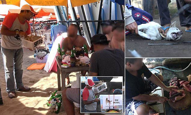 How dogs are brutally slaughtered in Bali and fed to tourists