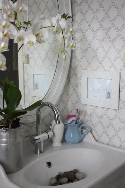 Lyse drømmer: Et toalett besøk...