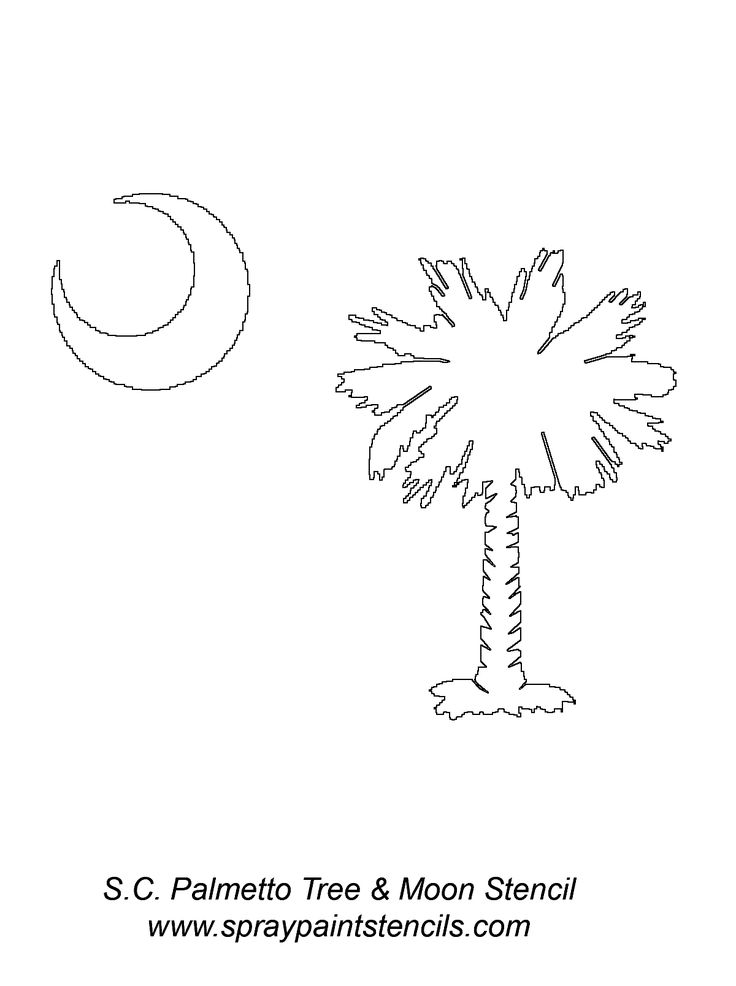 This shows my state tree and is a great symbol for all South Carolinians.