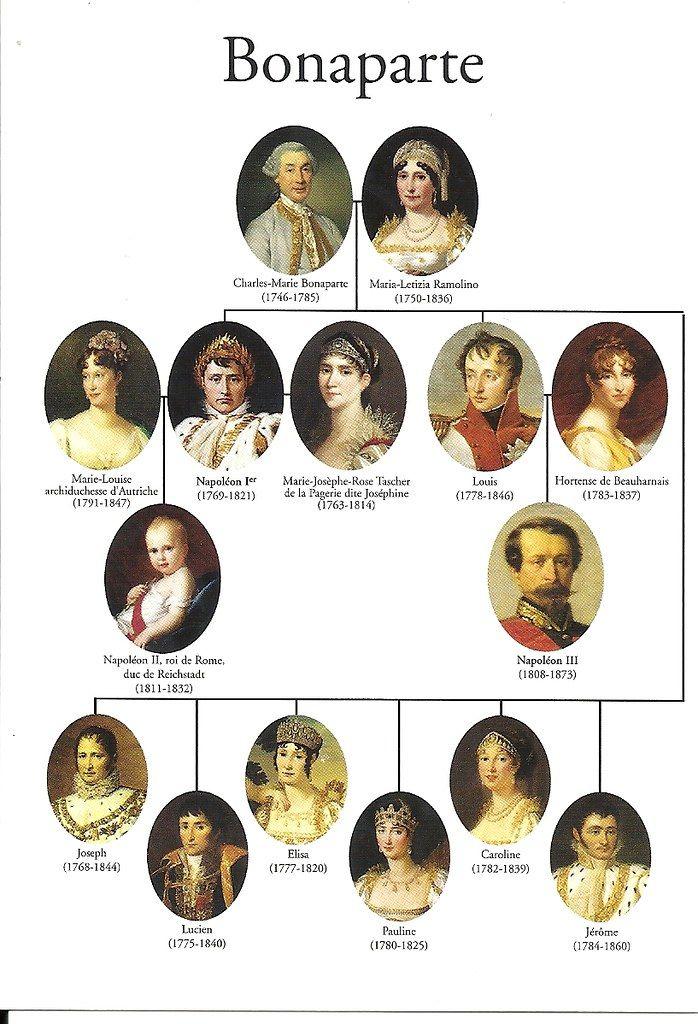 Bonaparte Royal Family Trees French History Napoleon