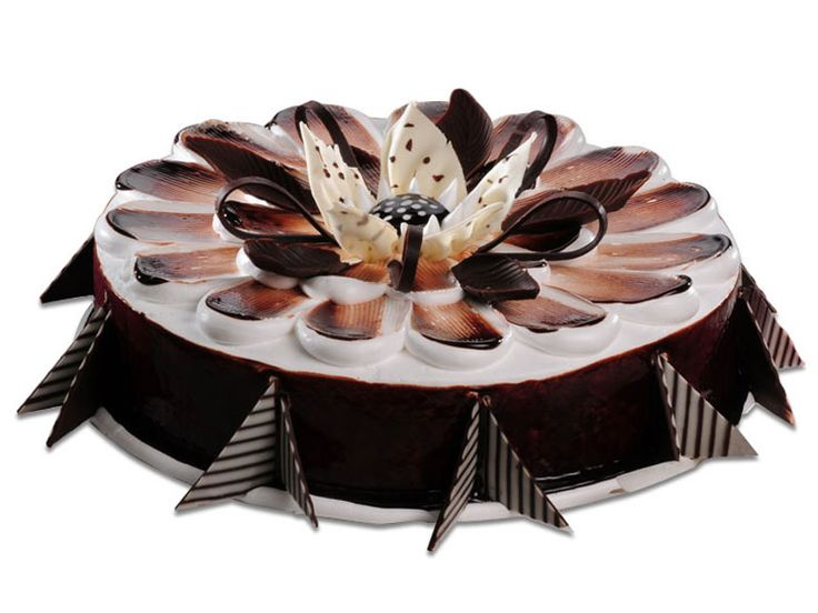 1000+ images about cake on Pinterest Chocolate cakes ...
