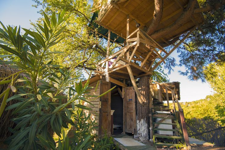 Ever dreamt of sleeping in a Magical treehouse? This is your chance! The Faraway Magical Treehouse isn't just any treehouse! It is located at the ancien ...