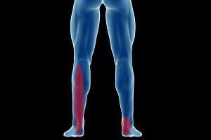 Achillessehnenschmerzen: Achillessehnenschmerzen gehören zu den häufigsten Problemen von Läufern. Die Schmerzen resultieren in der Regel aus einer Über- und/oder Fehlbelastung.