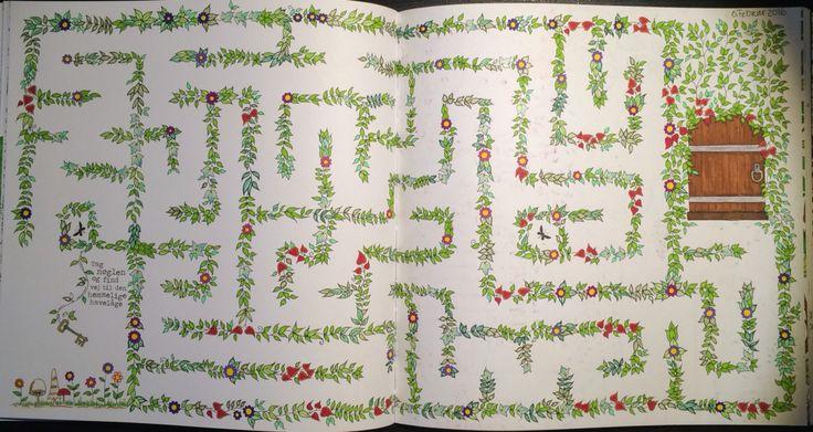 Labyrinth From Johanna Basfords 'secret garden'