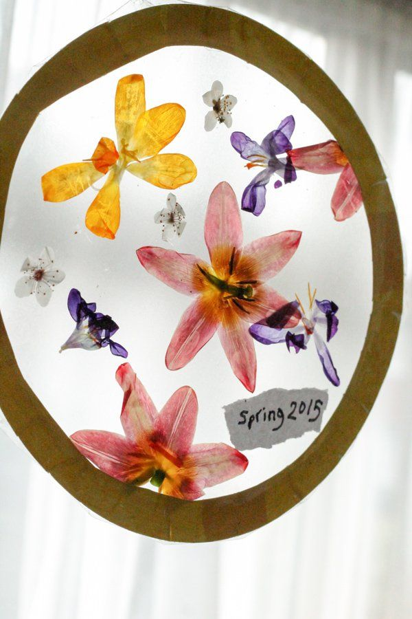 Dried pressed flowers craft using a microwave flower press. How to make a pressed flower sun catcher window display for Spring