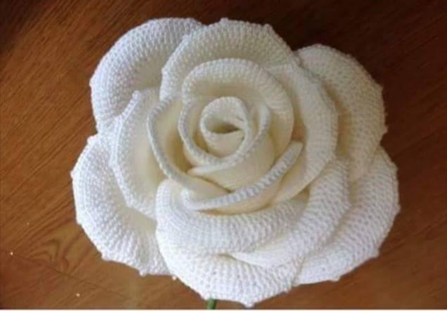 SOLO PUNTOS: Hermosa rosa