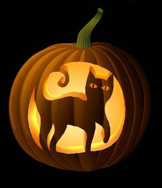 Black Cat Pumpkin Carving Stencil #CatPumpkinCarvingPatterns, #HalloweenPumpkinCarvingPatterns www.celebrating-h... Celebrating Halloween