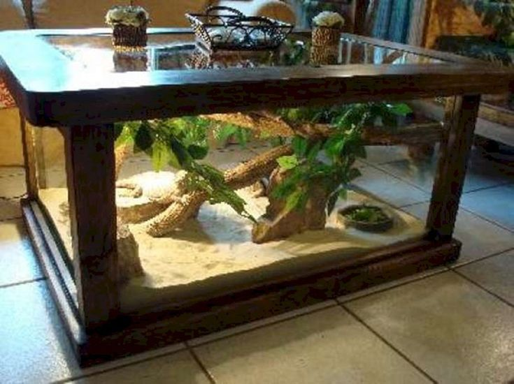 Pin by Nicklaus Davis on Turtle tank in 2020   Bearded dragon terrarium, Aquarium coffee table ...
