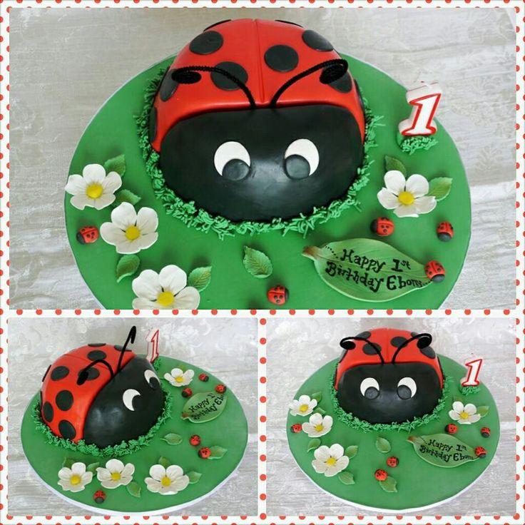 Lady bird lady bug cake