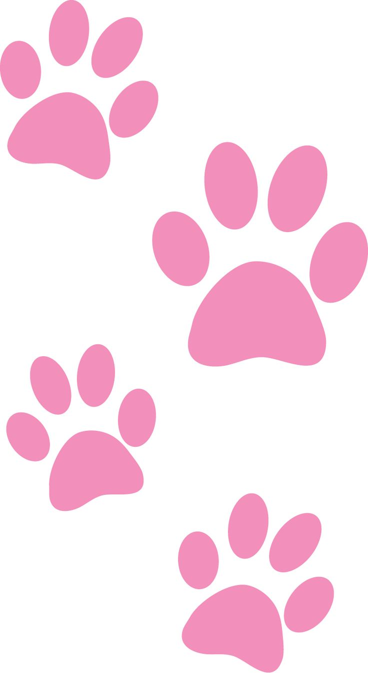 17 Best images about Paw Prints! on Pinterest | Clip art, Cat paw ...