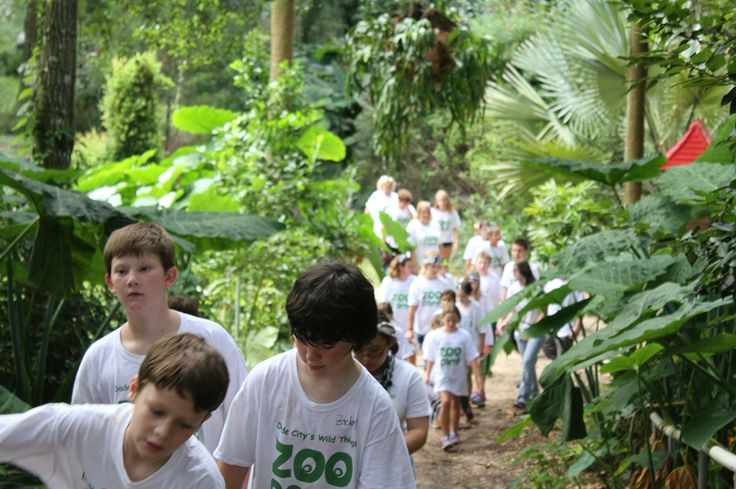 Zoo tours with campers